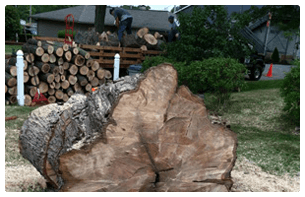 Landscapers in Pittsburgh PA | Pittsburgh, PA | Extreem Tree Service  | Pittsburgh, PA | Extreem Tree Service | 0