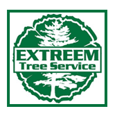 Tree Service | Pittsburgh, PA | Extreem Tree Service