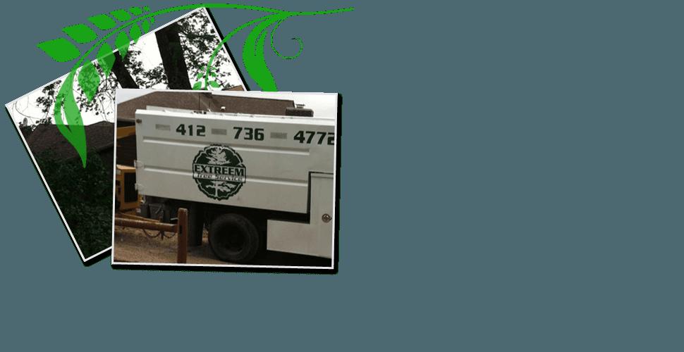Tree Care Service | Pittsburgh, PA | Extreem Tree Service