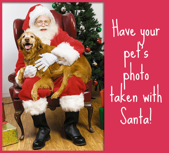 Have your Pet's photos taken with santa