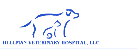 Small animal veterinarian | Klamath Falls, OR | Hullman Veterinary Hospital, LLC | 541-883-3449