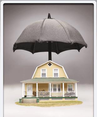 Multiple Providers | Washington, MI | Poljan Insurance Agency | 586-781-5000