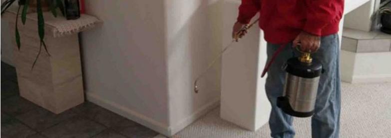 Termites Control Spray