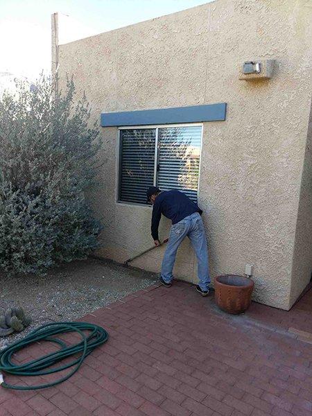 Pest control work