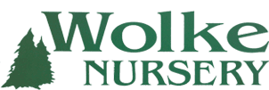 Wolke Nursery - Logo