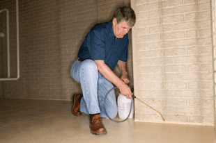 B&M Pest Control - Pest control services, Pest guide, Termites, spiders, roaches, fleas, ants - Windsor, MO 65360