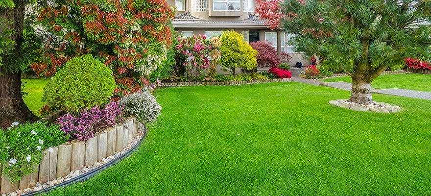 Tony S Lawn Care Lawn And Landscaping Dallas Tx