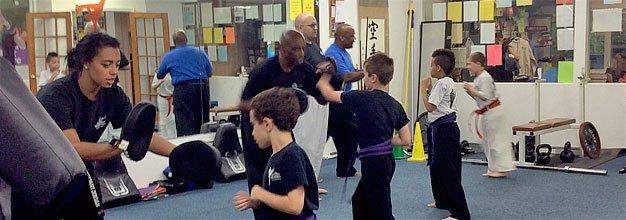 Karate Academy System