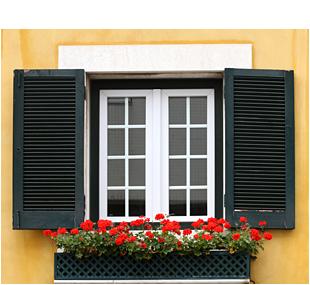 Lisbon windows