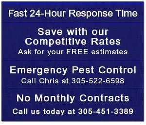 Pest Control - Key Largo, FL - Charter Pest Control, Inc.