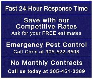 Insect Control - Key Largo, FL - Charter Pest Control, Inc.