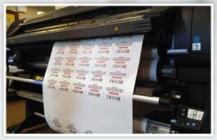 Fleet Graphics | Dothan, AL | Dothan Sign Designs Inc | 334-712-0110