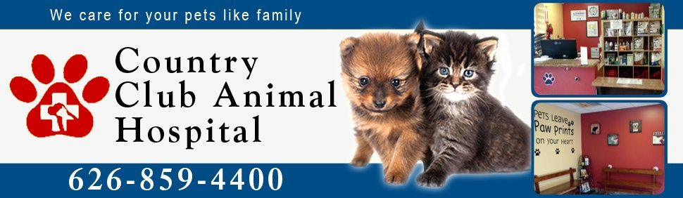 Animal Hospital - West Covina, CA - Country Club Animal Hospital