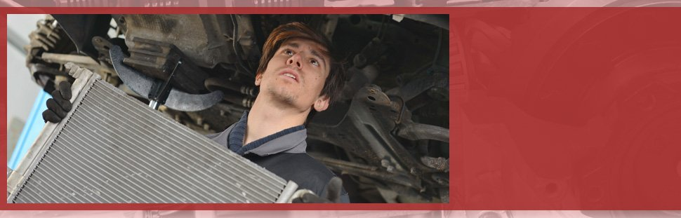 Mechanic holding the car's radiator