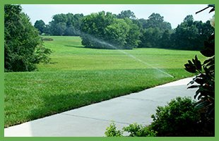 Turf Landscaping |  Bowling Green, KY | Iron Bridge Sod Farms | 270-781-8873