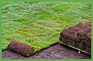 Sod Installation and Care |  Bowling Green, KY | Iron Bridge Sod Farms | 270-781-8873