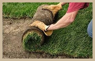 Landscaping | Byron, MN | DeCook Excavating | 507-365-8730