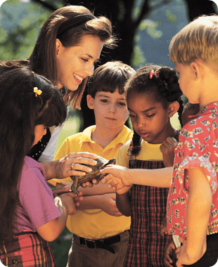 Class examining a turtle at the park