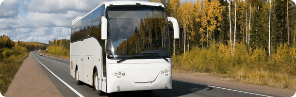 Travelling bus on road