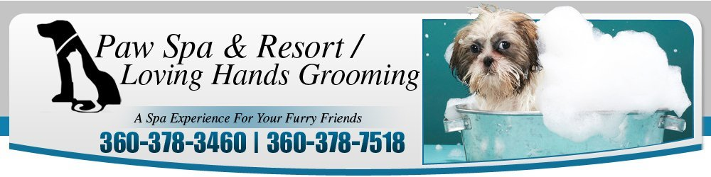 Pet Grooming Services - Friday Harbor, WA - Paw Spa & Resort / Loving Hands Grooming