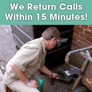 Pest Management - Mt Laurel, NJ - Team Termite & Pest Control