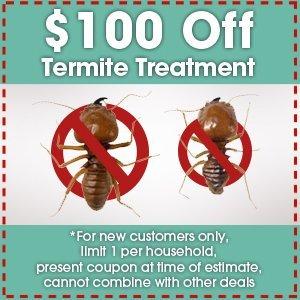 Termite Control - Mt Laurel, NJ - Team Termite & Pest Control