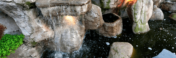 Pond Water System