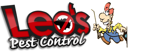 Insect Extermination | Riley, MI | Leo's Pest Control | 810-523-9295