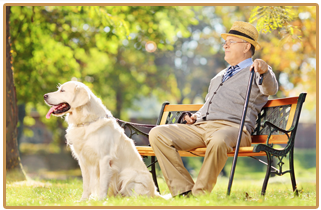 old man sitting on a bench with a dog