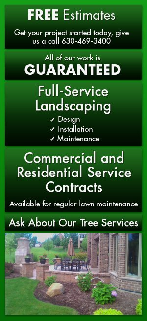 Full-service residential and commercial landscaping and lawn services - Glen Ellyn, IL - Green Planet Inc