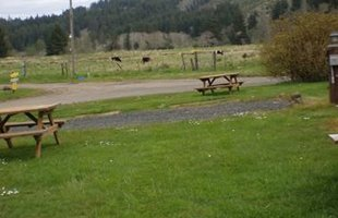 Campers | Lincoln City, OR | Chinook Bend RV Resort | 541-996-2032