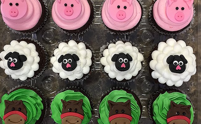 Animal inspired cupcakes