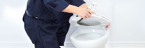 Toilet and sink repairs