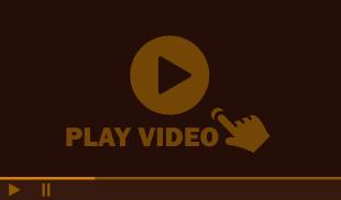 Attorney Michael L. Garcia Video