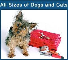 Animal Care - Rome, NY - Doggie Doos