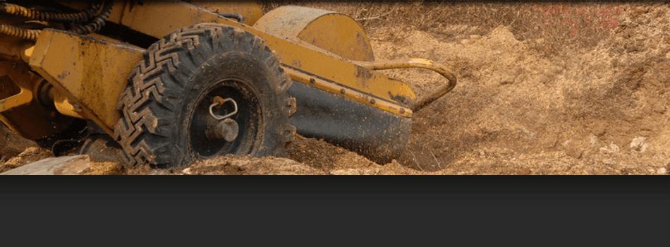 Stump Grinding | Raritan, NJ  | A & W Landscape and Tree Service | 908-448-2344