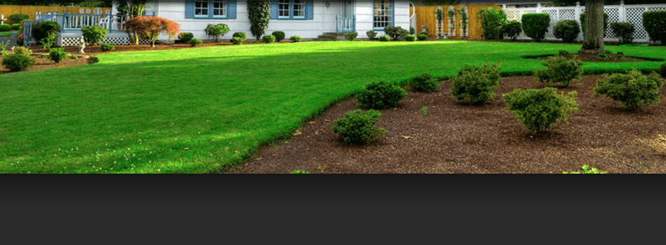 Lawn and Tree Services | Raritan, NJ  | A & W Landscape and Tree Service | 908-448-2344