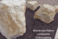 Minnesota Yellow