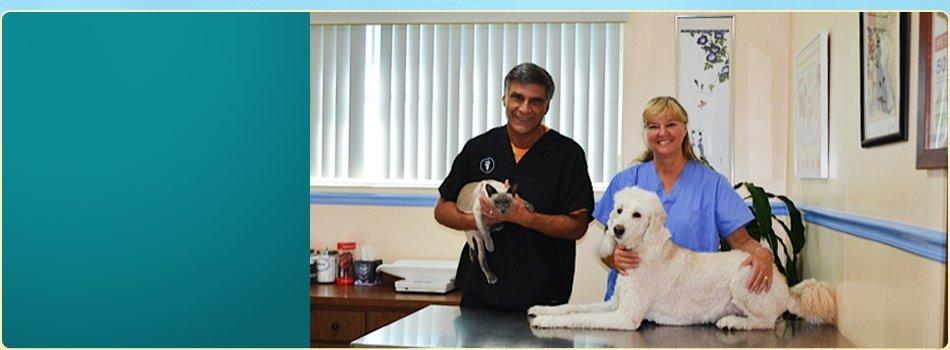 Veterinary Services | Stuart, FL | Boulevard Animal Hospital | 772-781-1118