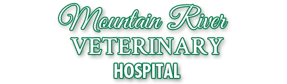 Mountain River Veterinary