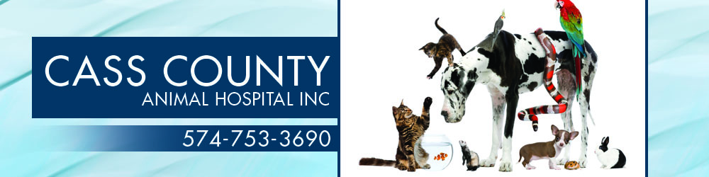 Veterinarians Logansport, IN - Cass County Animal Hospital Inc
