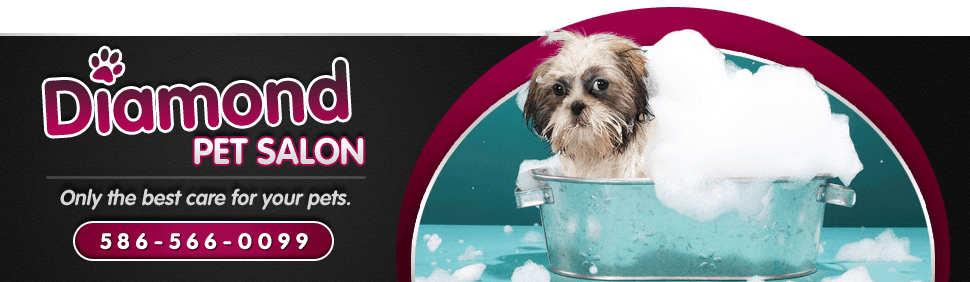 Diamond Pet Salon  - Pet Grooming - Macomb Township, MI