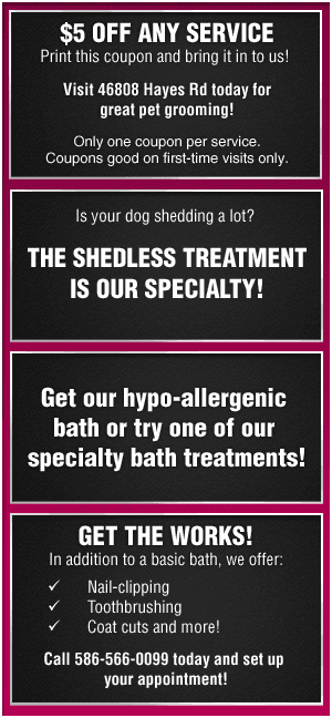 Pet Grooming and Trimming - Macomb Township, MI - Diamond Pet Salon