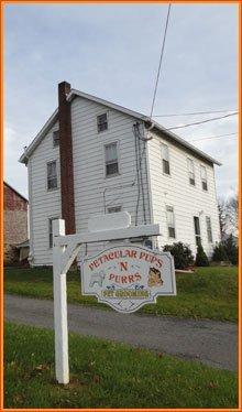 Grooming - Nazareth, PA - Petacular Pups-N-Purrs