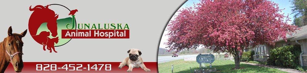 Pet Care Waynesville, NC - Junaluska Animal Hospital