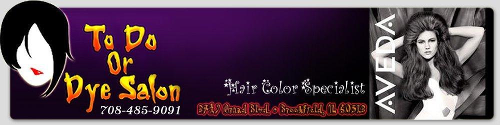 Beauty Salon - Brookfield, IL - To Do or Dye Salon