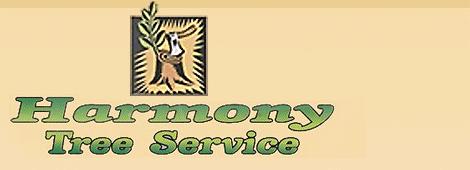 Tree Services | Schenectady, NY | Harmony Tree Service | 518-355-4700