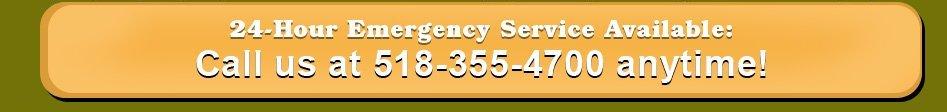 shrub pruning | Schenectady, NY | Harmony Tree Service | 518-355-4700