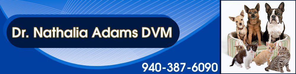 Veterinary Denton, TX - Nathalia Adams DVM 940-387-6090