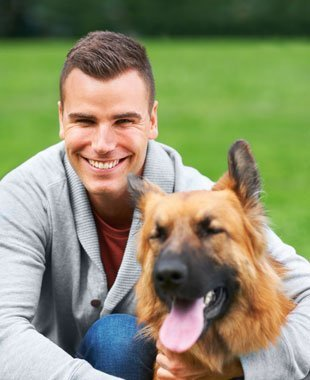 Obedience Trainer | Knoxville, TN | Dog Training In Your Home | 865-692-1221